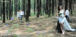 Album ảnh cưới chụp tại Hạ Long misskhue-035